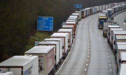 Obst- und Gemüseexporteure fordern grünen Korridor zu und von GB