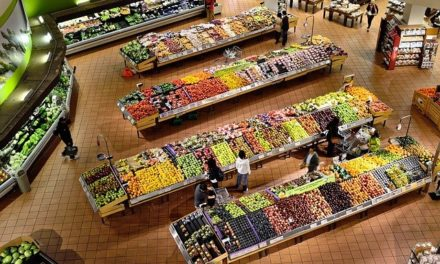 20% mehr Obst und Gemüse aus Marokko