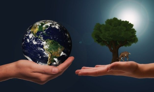 Klimaschutzgesetz mit Verbot von Verbrennungsmotoren verabschiedet